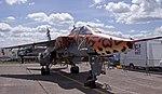 Jaguar (3639159640).jpg