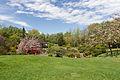 Jardin japonais - Toulouse - 2012-04-10 - 2.jpg
