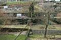 Jardins familiaux & Jardin de la transition Pétrusse-101.jpg