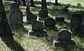 Jewish cemetery Zolynia IMGP4597.jpg