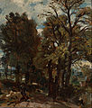John Constable - Fen Lane, East Bergholt - Google Art Project.jpg