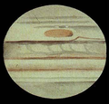 Jupiter Great Red Spot Elger November 1881.png