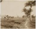 KITLV - 39055 - Muller, Julius Eduard - Paramaribo - Plantation Zorg en Hoop (sugar, cocoa, bananas) in Surinam - circa 1885.tif