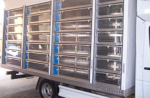 Pigeon racing -  Racing pigeons are often transported in specially modified trucks.