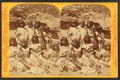 Kai-vav-its, a tribe of Pai Utes living on the Kai-bab Plateau near the Grand Cañon of the Colorado in Northern Arizona - group of women in full dress, from Robert N. Dennis collection of stereoscopic views 2.png