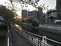 Kashiigawa River at dusk.jpg