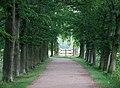 Kasteeldreef Oud-Valkenburg - panoramio.jpg