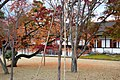 Katsura Rikyu (3263869065).jpg