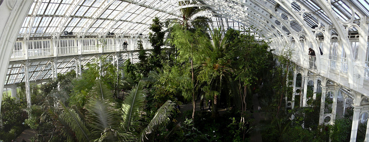 serre de jardin en verre horticole