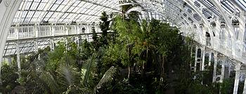 Vista panorámica del interior de un invernadero en los Kew Gardens, Londres