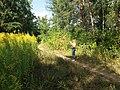 Kharkiv Botanical Garden 03.jpg