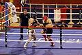 Kick Boxing Brest 09 02 2014 017.JPG