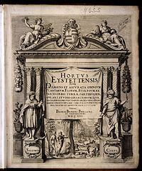 Kilian, Wolfgang - Hortus Eystettensis2.jpg