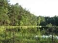 Kleiner-Tannensee-bei-Diemitz-11-IV-2007-384.jpg