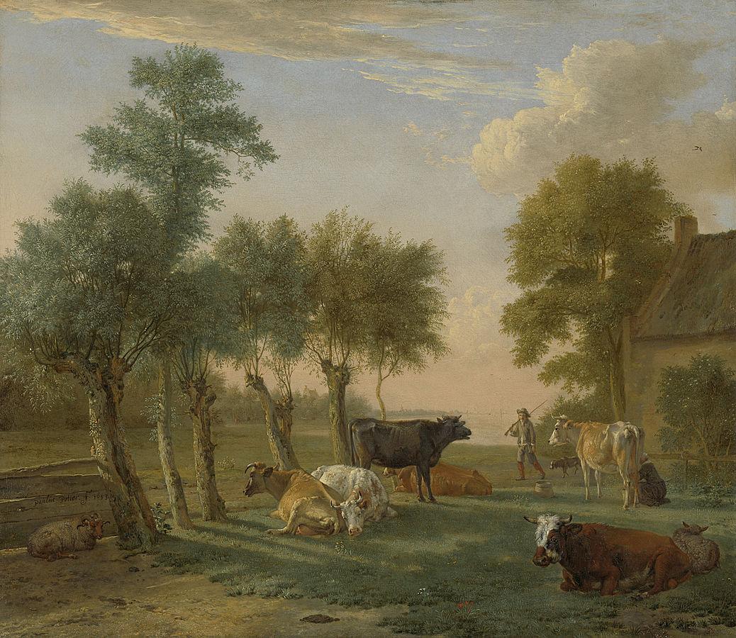 Cows in a Meadow near a Farm