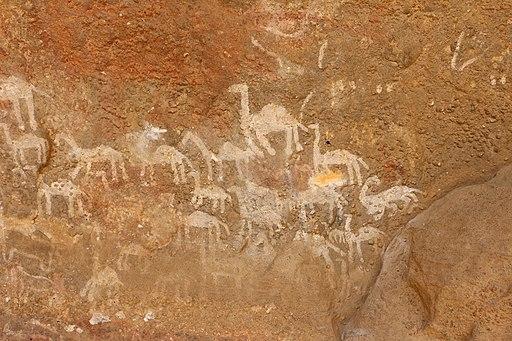 Kohaito, grotta di adi alauti con pitture rupestri databili al 2500 ac ca. 36 dromedari