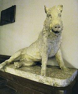 Lejonet Och Svinet Wikipedia