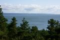 Krynica Morska, Wielbłądzi Garb, widok na zatokę.png