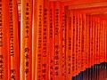 Kyoto Schrein Fushimi-Inari-taisha Torii 23.jpg