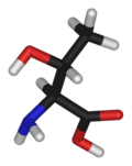 L-threonine-3D-sticks.png