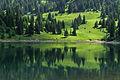 Lac des Chavonnes (23730784).jpg