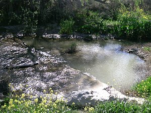 Lago pequeño de Anzola.jpg