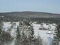 Der Langenberg im Winter