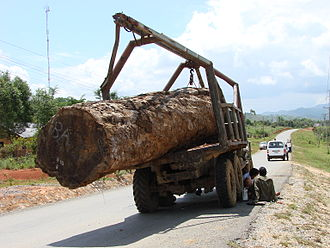 Deforestation in Laos - A logging truck on the Bolaven Plateau, southern Laos, 2009.