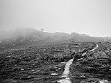 Larrun - Camino por la niebla.jpg