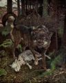 Lastbritishwolf.png