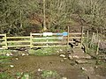 Lees Bottom - Stile and Footpath to Monsal Dale - geograph.org.uk - 754596.jpg
