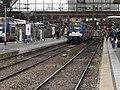 Lille - Gare de Lille-Flandres (22).JPG