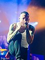 Linkin Park The Carnivores Tour 2014 03.jpg