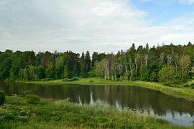 Linnaveski järv (Halliste jõgi).JPG