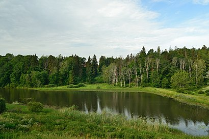 How to get to Halliste Jõgi with public transit - About the place