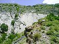 Lisina, primorsky svah - vlevo hladky tektonicky zlom.jpg