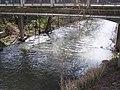 Little Butte Creek from Antelope Bridge.jpg