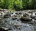 Little Etobicoke Creek.jpg