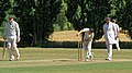 Little Hallingbury CC v. Thorley CC at Gaston Green, Essex 007.jpg