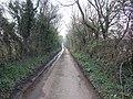 Looking down Stony Lane, Attleborough - geograph.org.uk - 382528.jpg