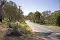Looking north-east on North Street in Tharwa.jpg