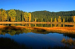 Lost Lake (Linn County, Oregon scenic images) (linnD0003).jpg