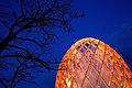 Luminale 2012 - OVO mit Baum.jpg