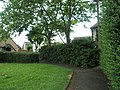 Lush greenery within Ecton Lane - geograph.org.uk - 854944.jpg