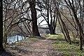 Lutsk Volynska-Ancient many-layer settlement Lutsk-VIII-2.jpg