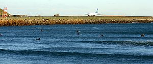 Lyall Bay Surfers - Flickr - 111 Emergency (1).jpg