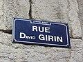 Lyon 2e - Rue David Girin - Plaque 1 (mars 2019).jpg