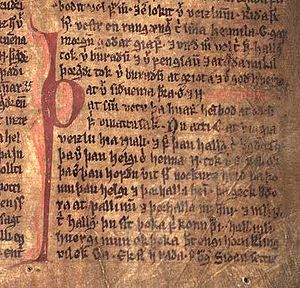 Njáls saga - Excerpt from Njáls saga in the Möðruvallabók (AM 132 folio 13r) circa 1350