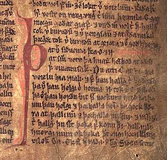 Saga - Excerpt from Njáls saga in the Möðruvallabók (AM 132 folio 13r) c. 1350.