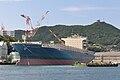 MOL Contribution (ship, 2014) 001.jpg